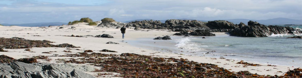 The beach at Iona