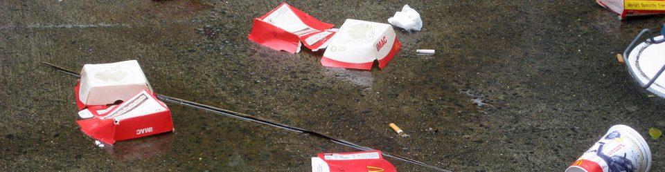 Litter stick to a wet pavement